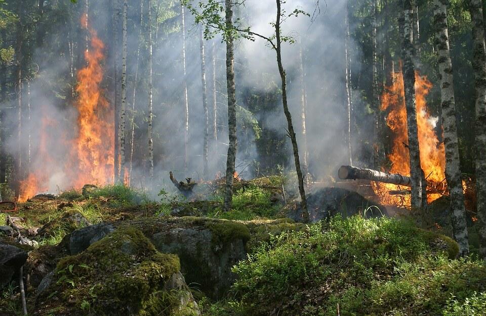 Yψηλός κίνδυνος πυρκαγιάς Συναγερμός για το Σάββατο 10-8-boreiageitonia0908