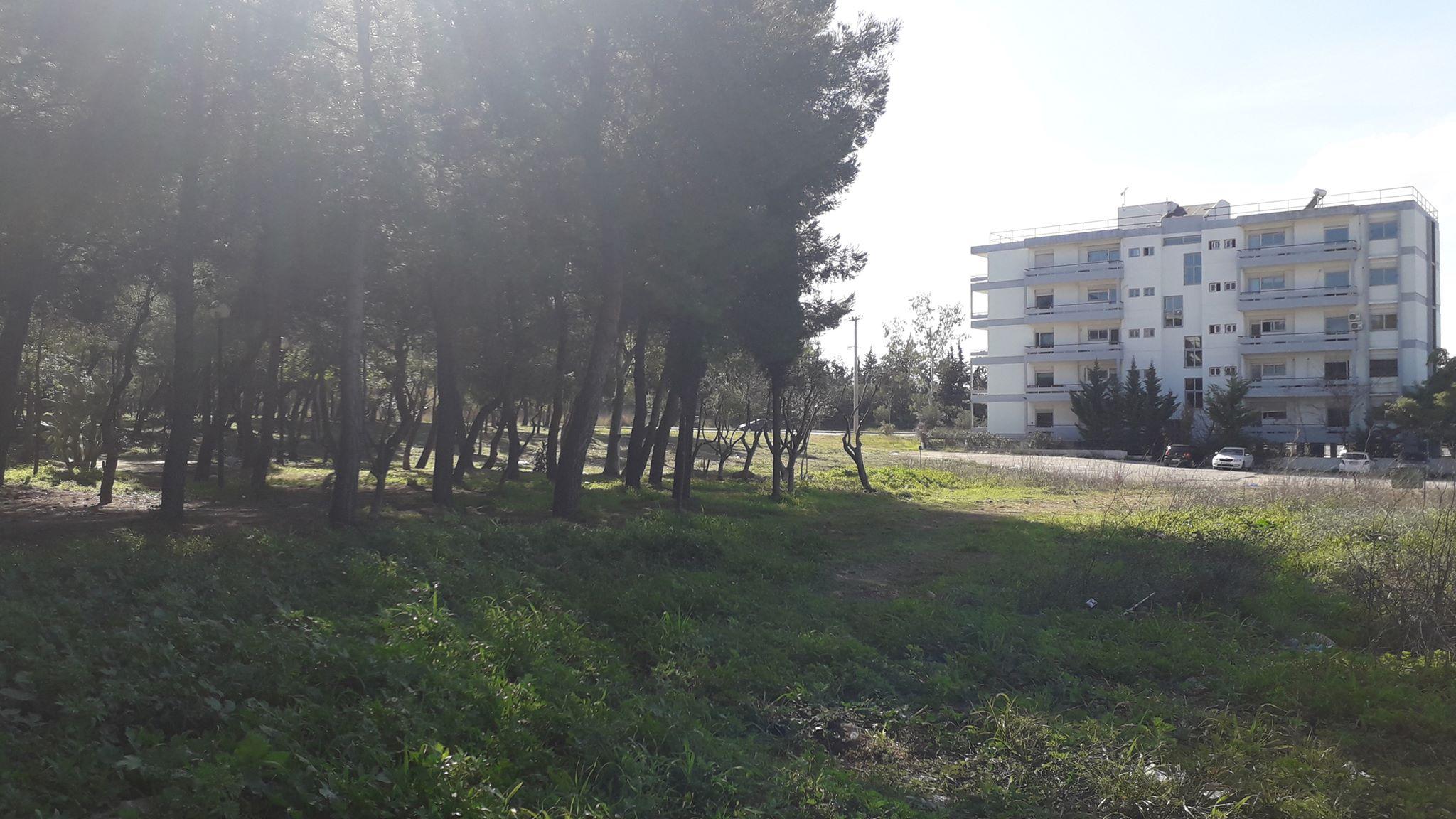 Δημήτρης Οικονόμου: Δράση καθαρισμού-εξωραϊσμού  στην περιοχή της οδού Πίνδου