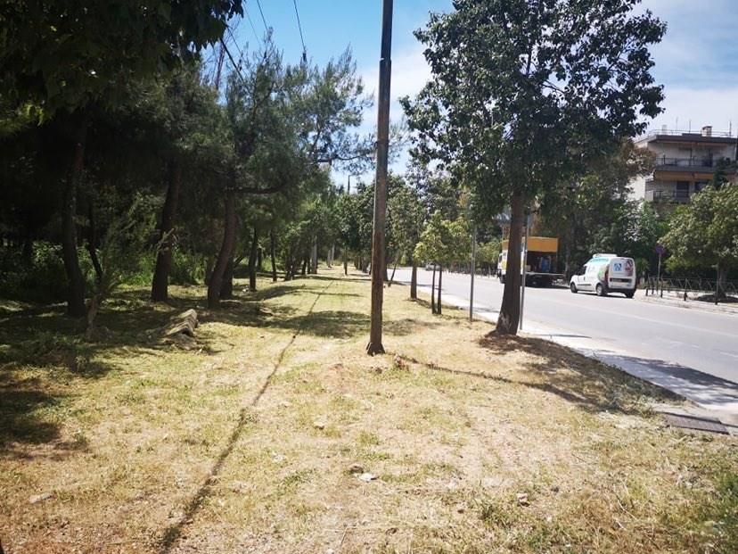 Δήμος Παπάγου -Χολαργού: Αποψιλώσεις και καθαρισμοί κοινόχρηστων χώρων του Δήμου