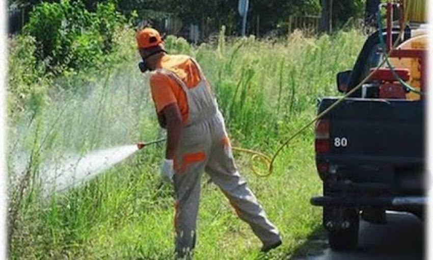 Πεντέλη: Εφαρμογή του Προγράμματος Καταπολέμησης Κουνουπιών