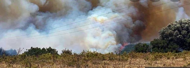 Πυρκαγιά: Σε εξέλιξη πυρκαγιά σε δασική έκταση