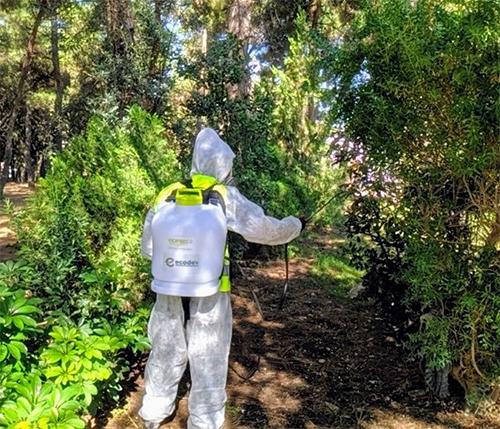 Αγία Παρασκευή: Λήψη μέτρων για την καταπολέμηση των κουνουπιών